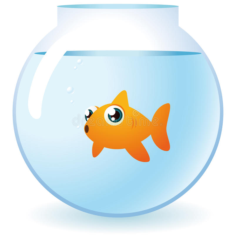 Goldfish in a bowl. Looking at camera with bubbles illustration stock illustration
