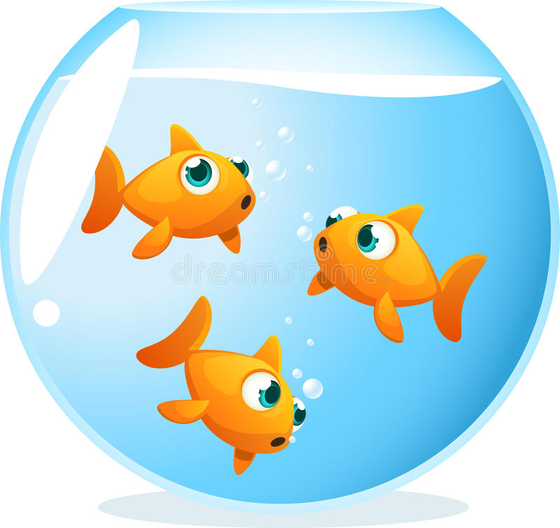 Goldfish in a bowl. Swimming around vector illustration