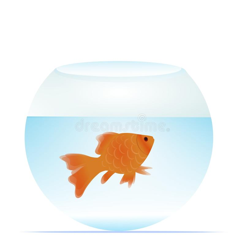 Goldfish in bowl. Vector illustration of little goldfish swimming in a round glass tank full with water vector illustration