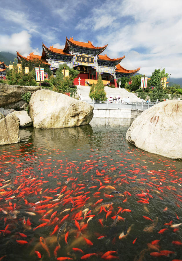 Download Goldfish In A Buddhist Temple In China Stock Photos - Image: 13829263
