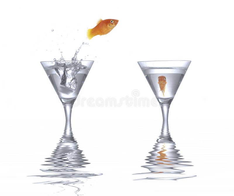 Goldfish de salto foto de stock