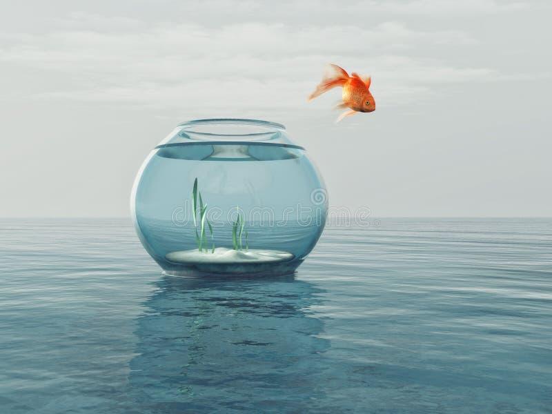 Goldfish em uma bacia ilustração stock