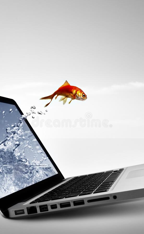 Goldfish jump out of the monitor royalty free stock photos