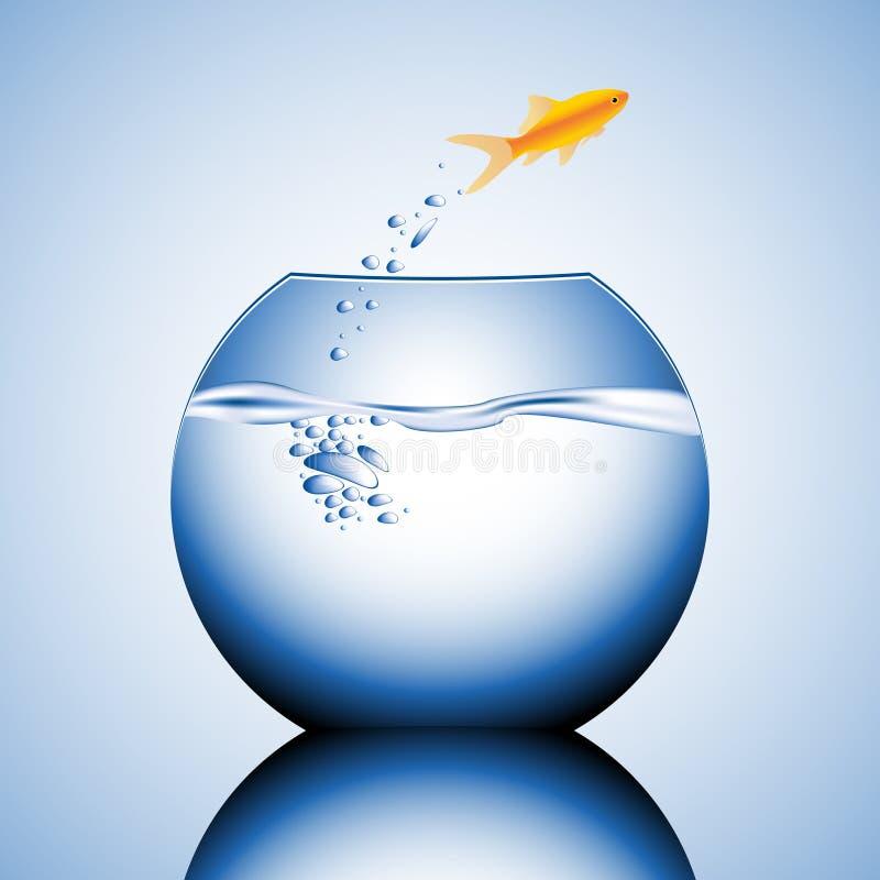Free Goldfish Jumping Stock Photography - 5796922