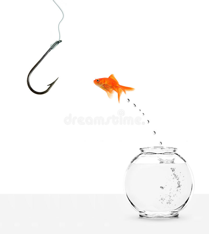 Free Goldfish Jumping Out Of Bowl Towards Empty Hook Stock Photography - 11441512