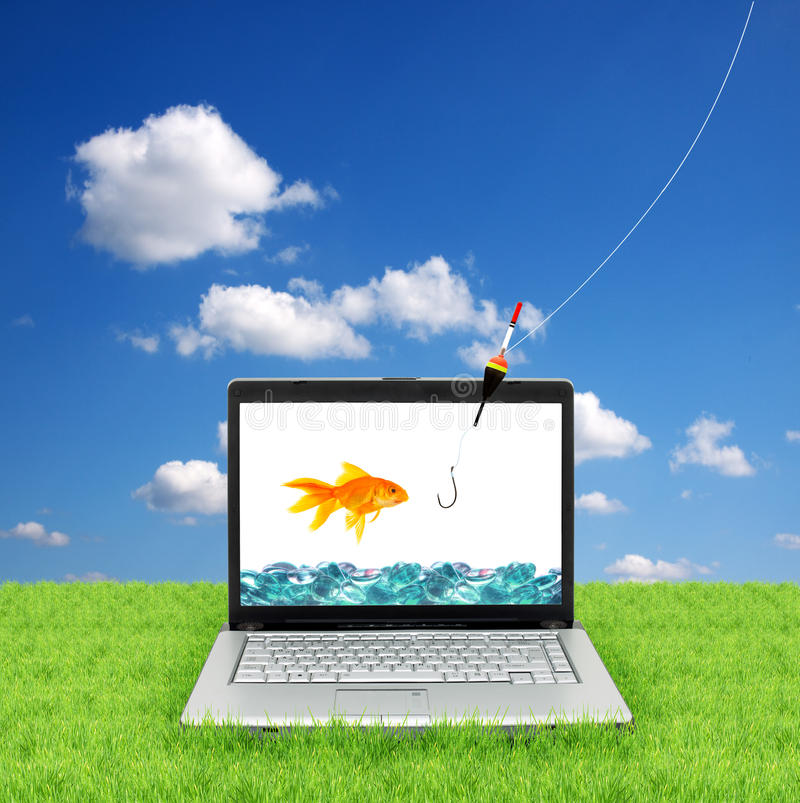 Goldfish in a laptop. Isolated on a white background stock image