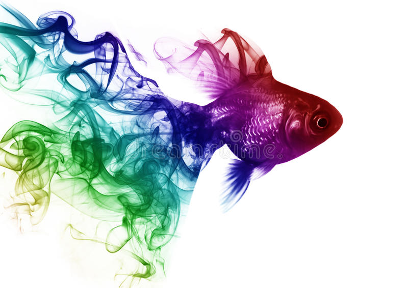 Goldfish od dymu obraz stock