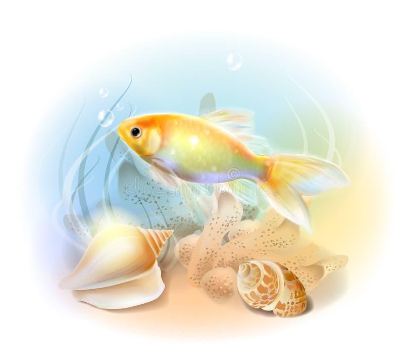 Goldfish in the sea. Illustration of the tropical underwater world. Aquarium fish vector illustration