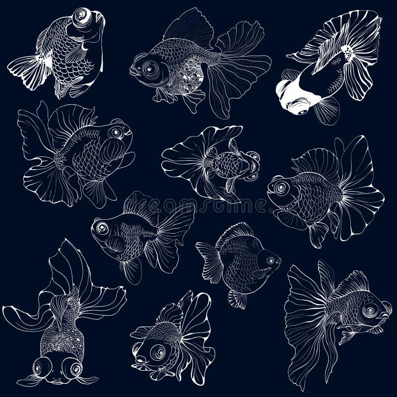 Goldfish - set wektorowi rysunki Używa drukowanych materiały, znaki, plakaty, pocztówki, pakuje ilustracji