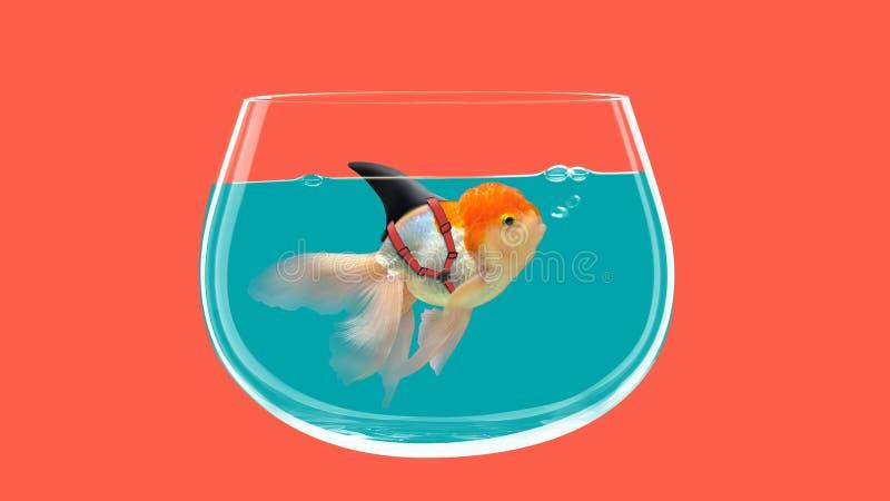Goldfish with shark fin swim in fish bowl, Gold fish in water. Mixed media. Goldfish with shark fin swim in fish bowl, Gold fish in blue water. Mixed media stock illustration