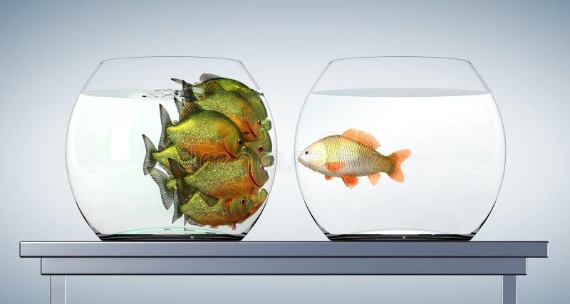 Goldfish und Piranhas lizenzfreie abbildung
