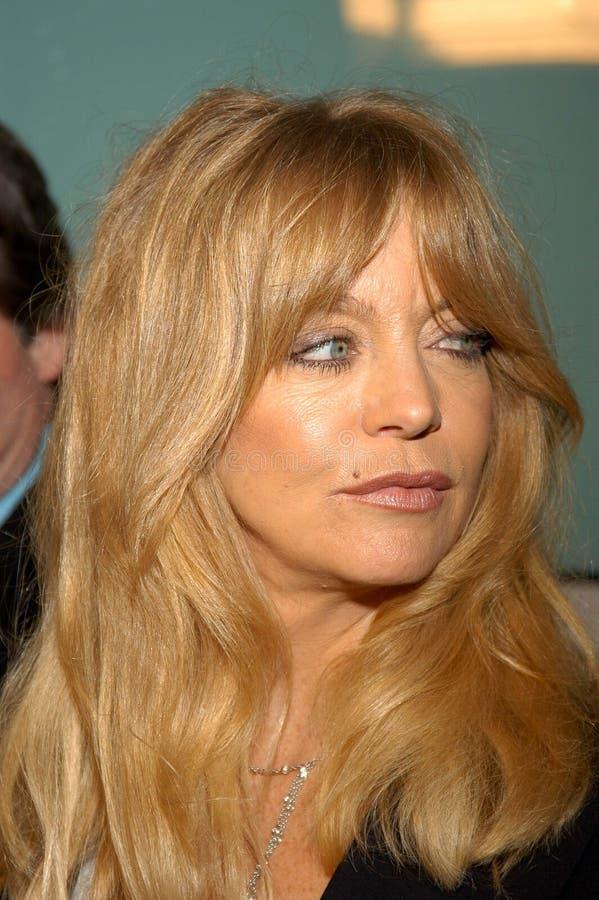 Goldie Hawn lizenzfreies stockfoto