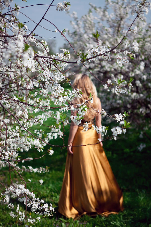 Goldkleid stockbild