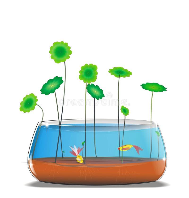 Goldlfish στην απεικόνιση fishbowl διανυσματική απεικόνιση