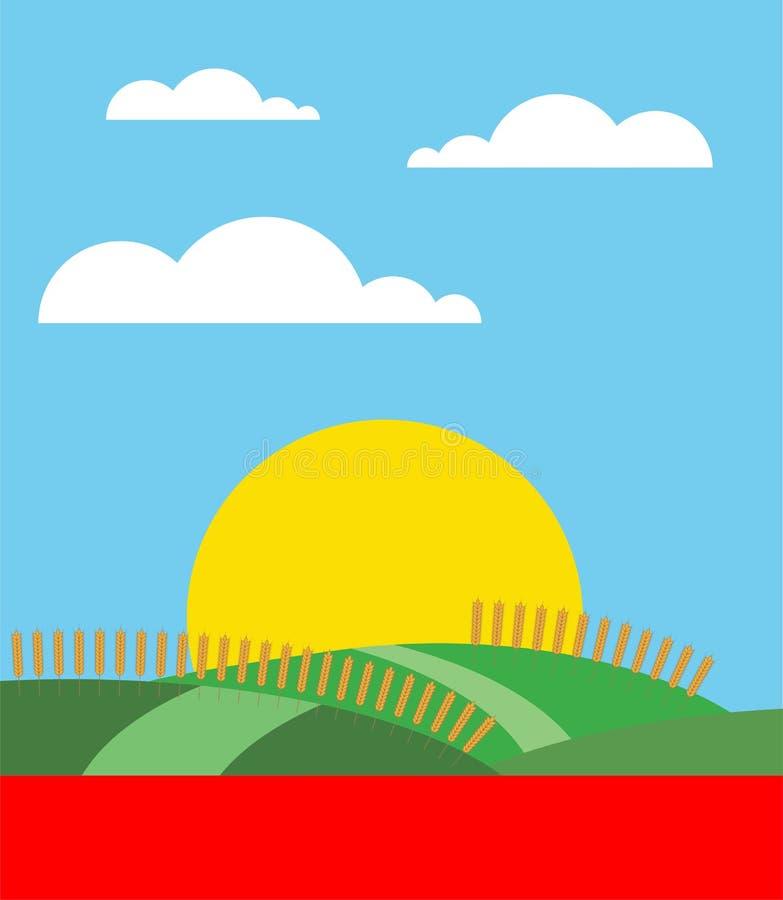 Goldweizenfeld, Sonnenuntergang oder Sonnenaufgang mit blauem Himmel vektor abbildung