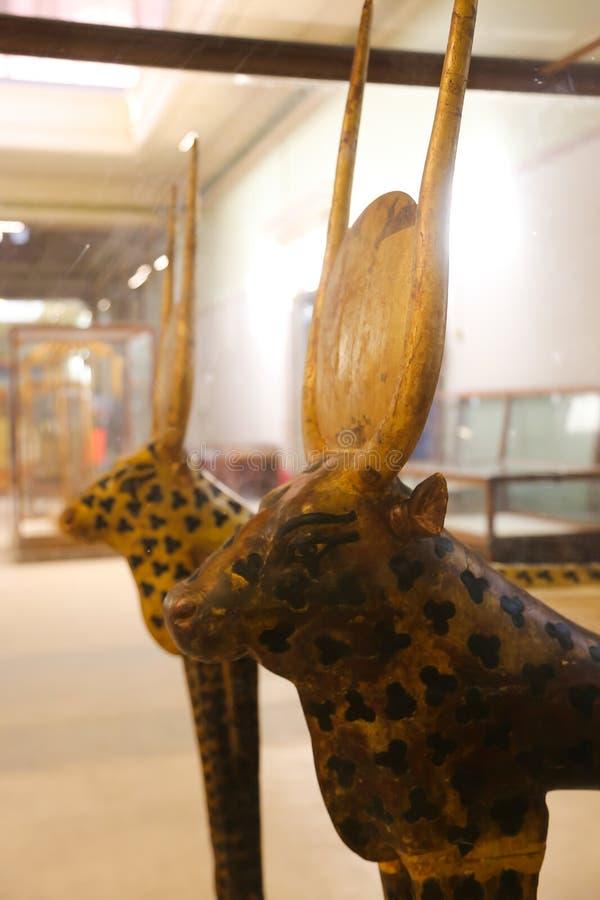 Goldy säng av den spända Ankh Amonskatten - egyptiskt museum royaltyfri foto