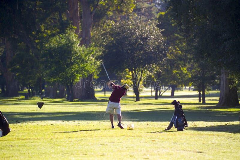 Download Golf övning arkivfoto. Bild av män, utomhus, green, klubbor - 42186