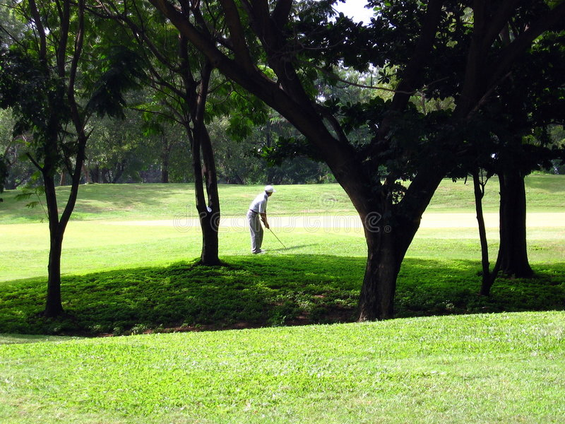 Golf. A man plays golf at a golf club after the seasonal monsoon rains in India. The lush green grass and green trees are normally dry in yellow and brown most royalty free stock photos