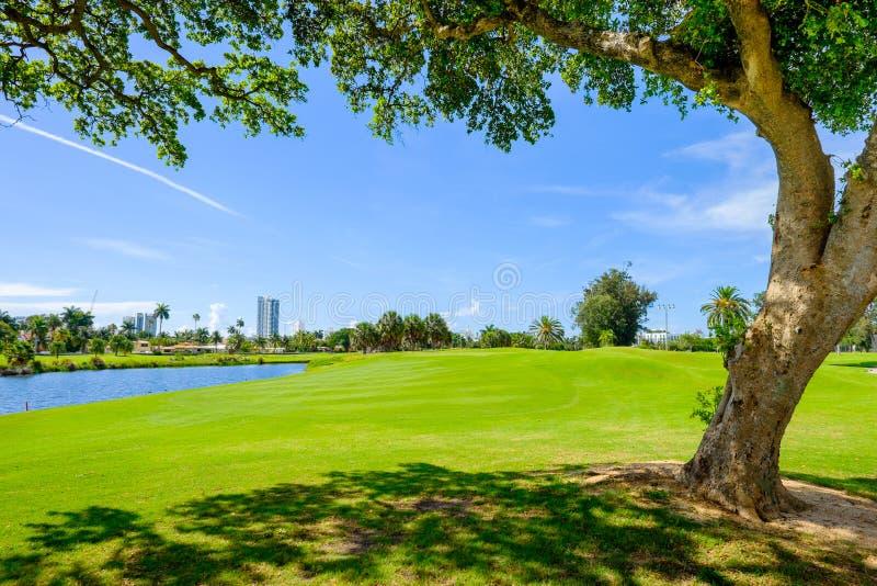 Golf photo stock