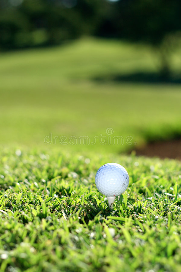 Download Golf Royalty Free Stock Images - Image: 4886349