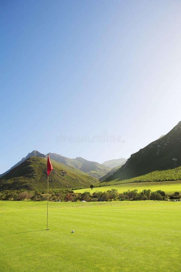 Golf #54 stock afbeelding
