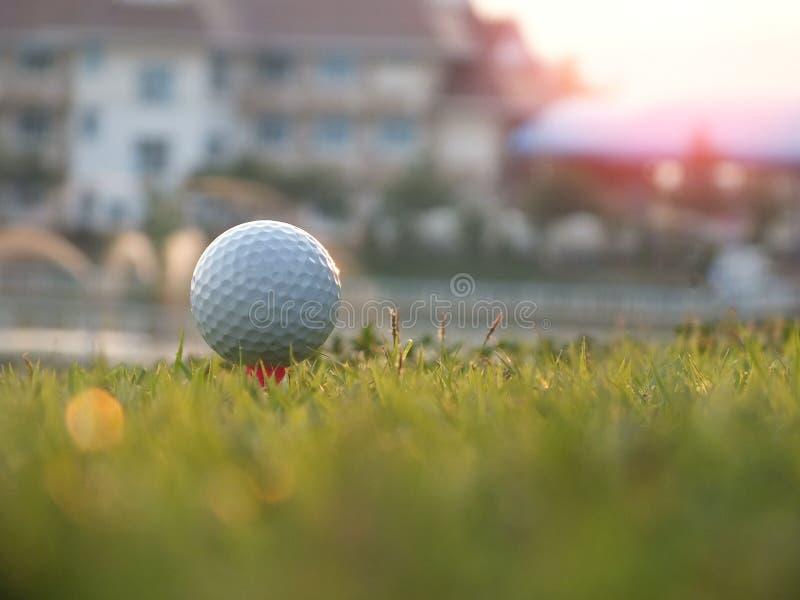 Golf auf dem roten T-St?ck im gr?nen Rasen lizenzfreies stockfoto