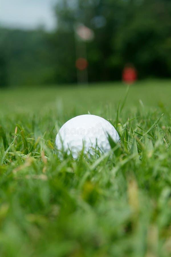 Golf-bal dichtbij green stock afbeelding