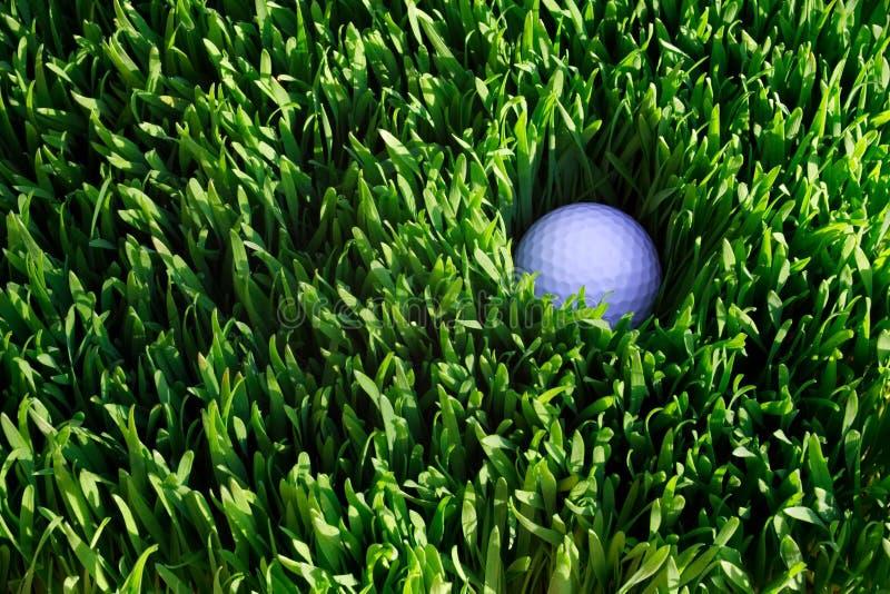 Download Golf Ball stock photo. Image of golf, ball, green, grass - 1115682