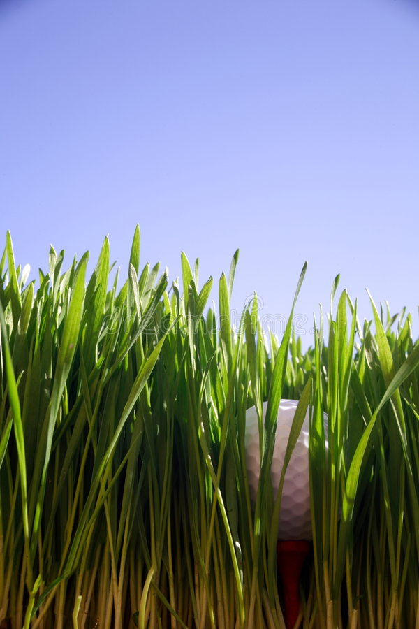 Download Golf Ball stock image. Image of grass, rough, copyspace - 1121205