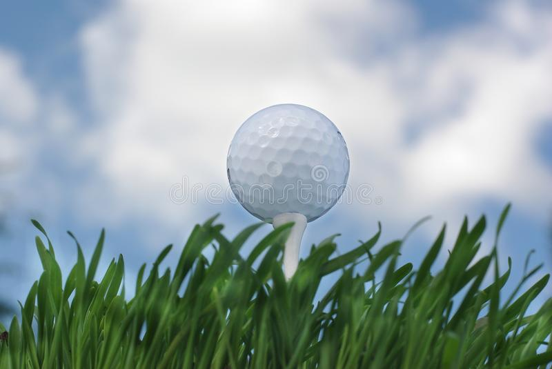 Download Golf ball stock image. Image of sport, field, white, course - 14854431