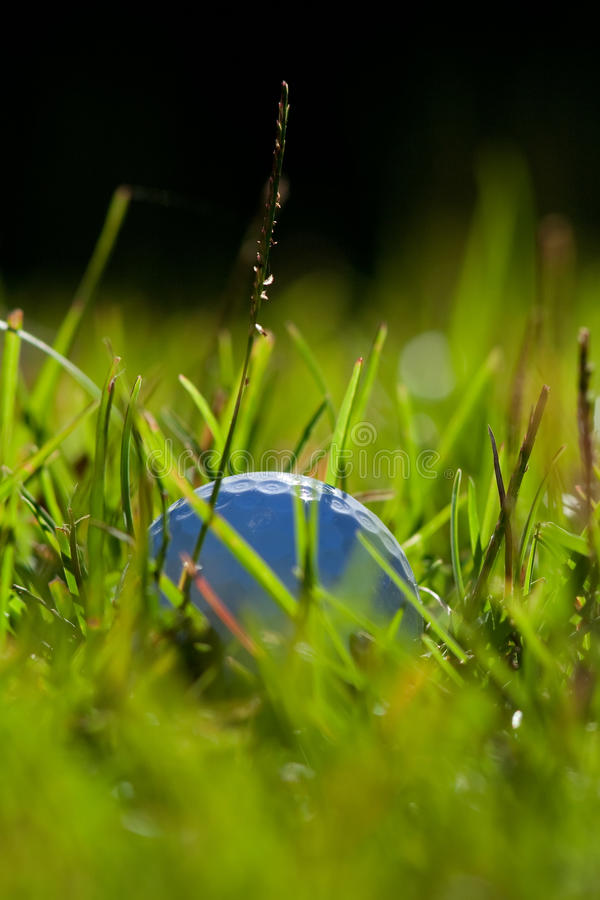 Download Golf ball stock image. Image of uncut, summer, vertical - 16343167