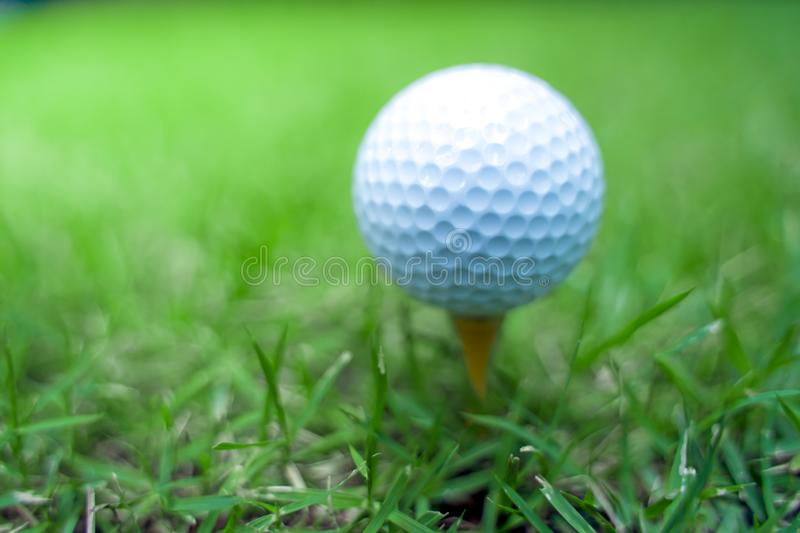 Golf ball close-up in soft focus at sunlight with Green grass. wide landscape as background ,Sport playground for golf club royalty free stock photography