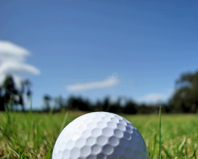 Golf Ball (close up). Top half of golfball laying in fairway with trees and field blurred off into the distance royalty free stock photos