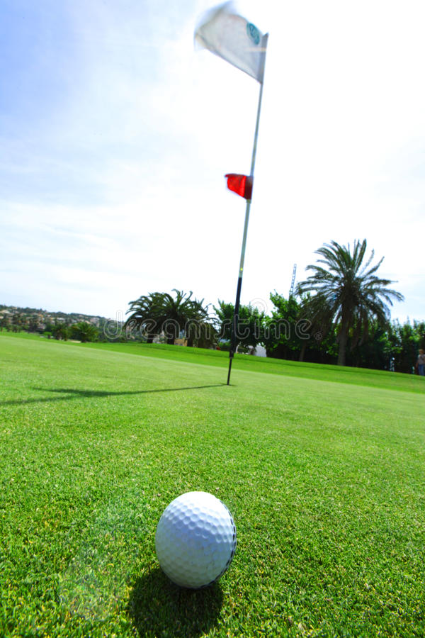 Download Golf-ball on course stock photo. Image of flag, putt - 25238186