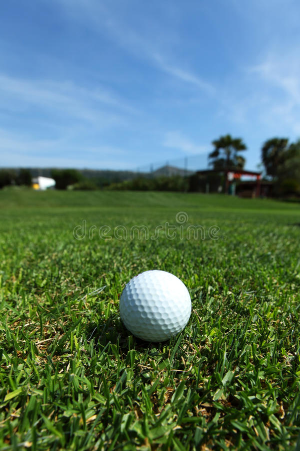 Download Golf-ball on course stock photo. Image of blue, nature - 25341596