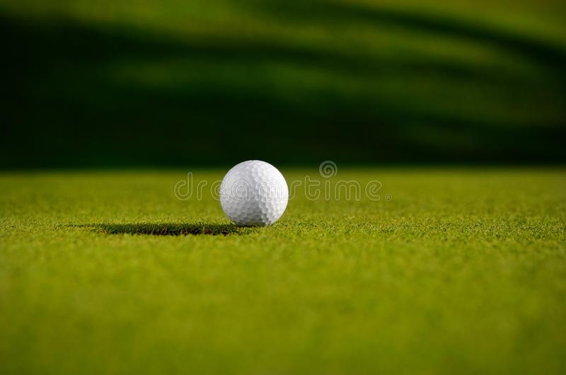 Golf Ball On A Course  royalty free stock photo