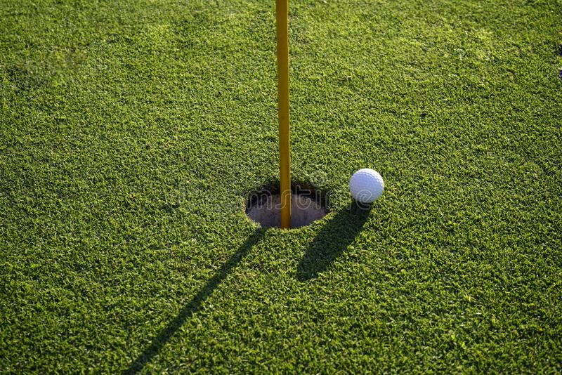 Golf ball on the edge of hole on the green grass. Golf ball on the edge of hole on putting green on golf course royalty free stock photo