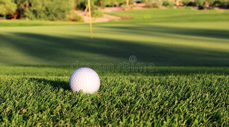 Golf Ball on fairway royalty free stock photography