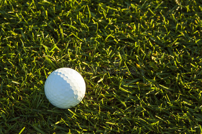 Golf Ball in Fairway at Sunrise royalty free stock images