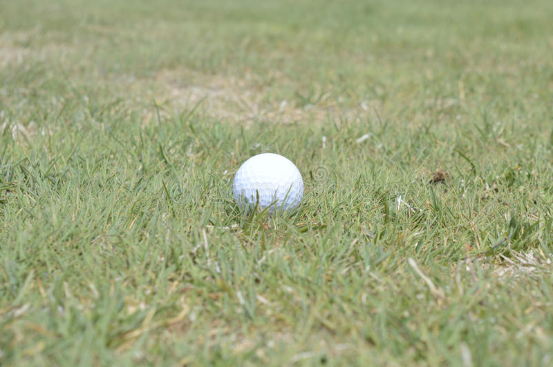 Golf ball on a fairway stock image
