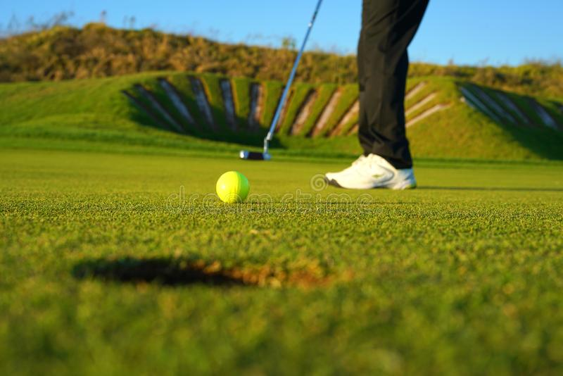 The golf player and the  golf ball stock photo