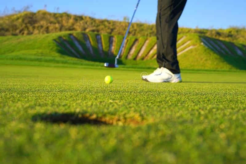 The golf player and the  golf ball royalty free stock image