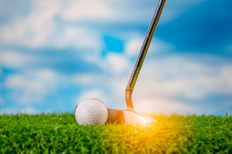 Golf ball on grass green and golf club for putting it royalty free stock photography