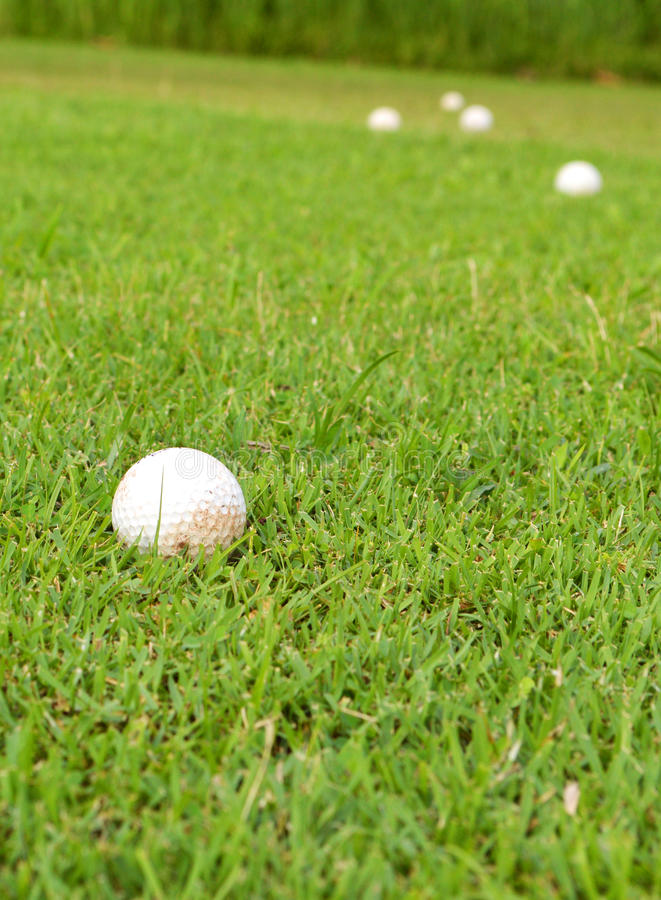 Golf ball in grass. Golf ball in the grass with selective focus stock photo