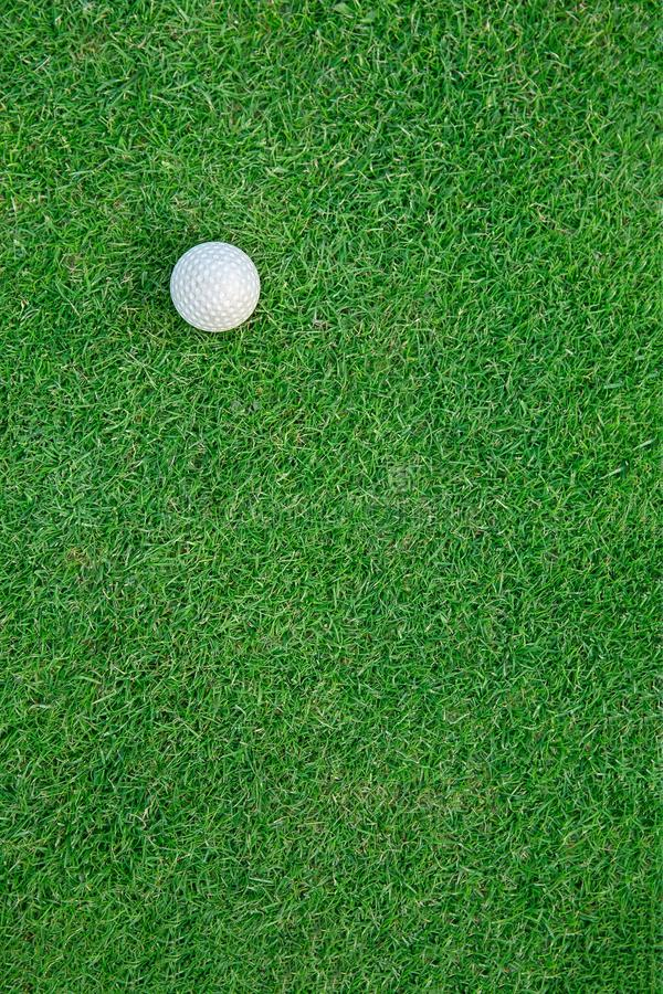 Golf Ball on the Grass for web background royalty free stock image