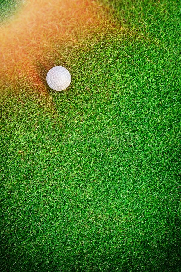 Golf Ball on the Grass for web background stock images