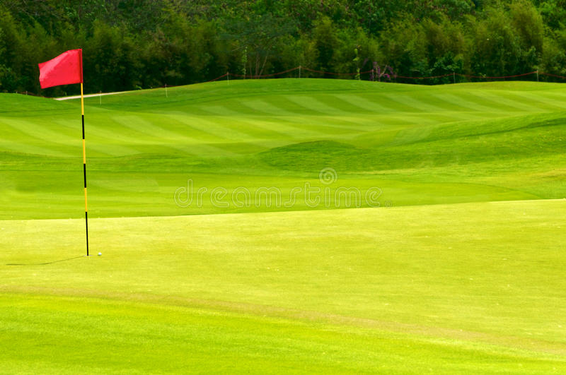 Download Golf ball on green stock image. Image of blue, closeup - 24289287