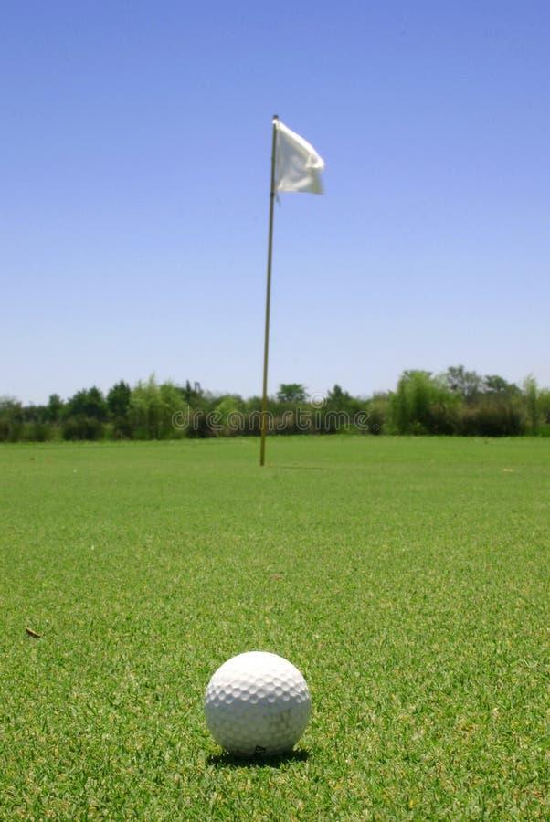 Golf ball in the green stock photos