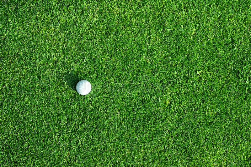 Download Golf ball on the green stock image. Image of equipment - 5675211