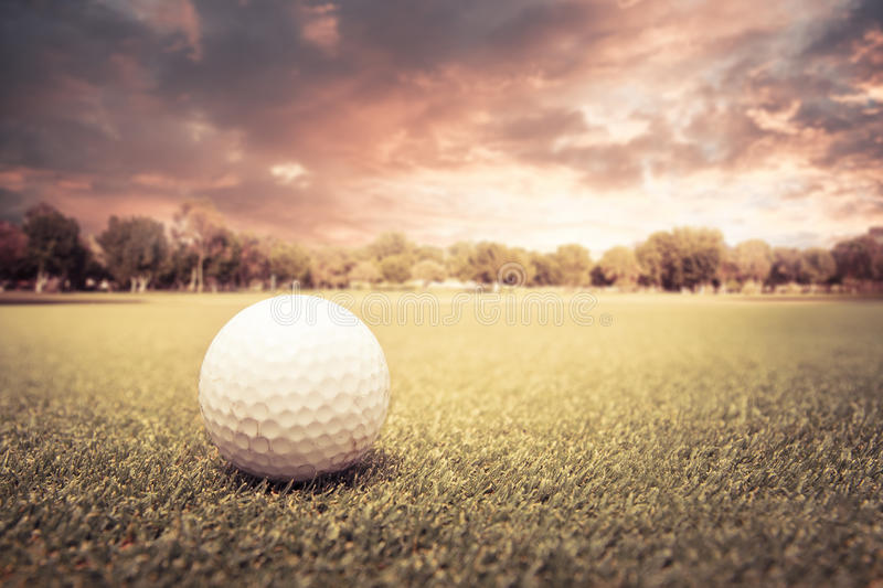 Golf ball on a green field. Golf ball lying on green field at sunset royalty free stock photo